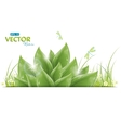 green leaves and dragonfly vector image