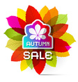 Autumn Sale with Colorful Leaves vector image vector image