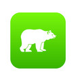 bear icon digital green vector image vector image