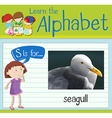 Flashcard letter S is for seagull vector image vector image