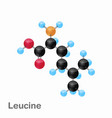 molecular omposition and structure of leucine leu vector image