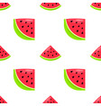 seamless pattern with hand drawn watermelon vector image