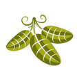 Spring leaf with tendrils simple icon nature and vector image vector image