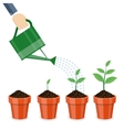 Watering can and plants in pots vector image vector image