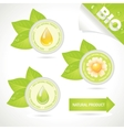 concept elements natural product vector image