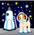 cute dog in astronaut costume vector image