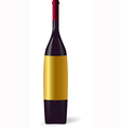 Elegant wine bottle vector image