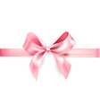 holiday pink bow vector image
