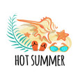 hot summer banner attributes vector image