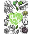 organic store cosmetics vector image
