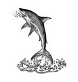 shark jumping hand drawing vintage engraving style vector image