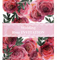 vintage roses background floral card retro vector image vector image