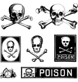 Vintage skull crossbones vector image vector image