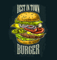 burger include cutlet tomato cucumber and salad vector image