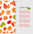 autumn leaves banner design - fall colorful vector image vector image