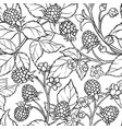 blackberry seamless pattern vector image