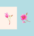 cute tiny magnolia flower compositions isolated vector image vector image