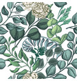 hand drawn pattern with eucalyptus succulent vector image vector image