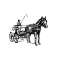 open carriage vector image vector image