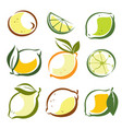 set lemons and lime symbols in sketch style vector image