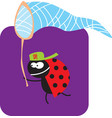 beetle with a butterfly net on hunt vector image vector image