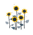 doodle floral with wild meadow vector image vector image