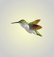 humming bird vector image vector image