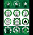 marijuana cannabis leaf symbol design vector image vector image
