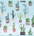 pattern of cactus and succulents on light blue vector image vector image