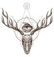 sketch of deer skull and all seeing eye outline vector image vector image