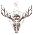 sketch of deer skull and all seeing eye outline vector image vector image
