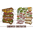 sketch sandwich with food ingredients vector image vector image