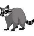 Adult funny raccoon vector image vector image