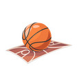 basketball ball field sport cartoon isolated icon vector image