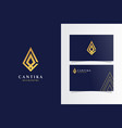 ca stone luxury logomark with business card vector image vector image