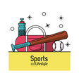 colorful poster of sports lifestyle with baseball vector image