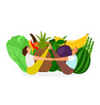 fresh diet vegan lifestyle vector image vector image