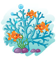 Goldfish swimming around the coral vector image vector image