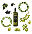 olive set with wreath isolated white background vector image vector image