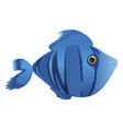 blue comic fish vector image vector image