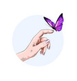 butterfly flying to finger girl hand color vector image