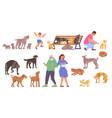 homeless animals flat set vector image vector image