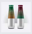 Glass bottles water isolated vector image