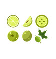 green fruits and berries set lime apple vector image vector image