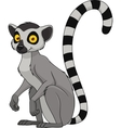 Adult funny lemur vector image vector image