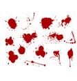 blood splat splash spot ink stain blot patch vector image vector image