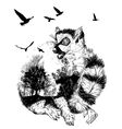 Double exposure Hand drawn Ring-tailed lemur vector image