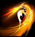 fire breathing dragon vector image