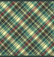 green red plaid check fabric texture seamless vector image vector image