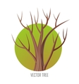 Isolated Oak Tree Without Leaves vector image